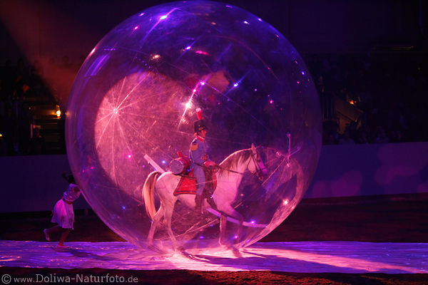 Gala horse-show photos rides in blow-ball