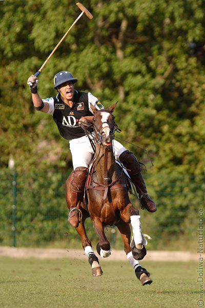 Poloplayer gallop scream horse-rider emotions after goal-shot